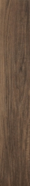 Hasel Ochra Gres Szkl. Rekt. Mat.  - Brązowy - 160x985 - Floor tiles - Hasel