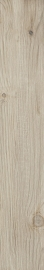 Thorno Beige Gres Szkl. Rekt. Mat.  - Beżowy - 160x985 - Floor tiles - Thorno