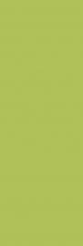Midian Verde ściana   - Zielony - 200x600 - Wandfliesen - Midian / Purio
