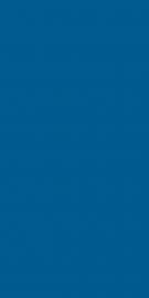 Vivida Blue Ściana   - Niebieski - 300x600 - Płytki ścienne - Vivida / Vivido
