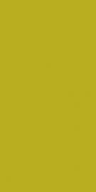 Vivida Verde Ściana   - Zielony - 300x600 - Wall tiles - Vivida / Vivido