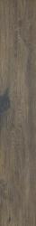 Aveiro Brown Gres Szkl. Rekt. Mat. - Brązowy - 0,2x1,2 - Floor tiles - Aveiro