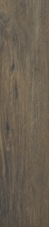 Aveiro Brown Gres Szkl. Rekt. Mat.   - Brązowy - 194x900 - Floor tiles - Aveiro