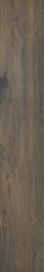 Aveiro Brown Gres Szkl. Rekt. Mat.   - Brązowy - 0,3x1,8 - Płytki podłogowe - Aveiro