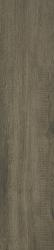 Tammi Brown Gres Szkl. Rekt. Mat.   - Brązowy - 194x900 - Płytki podłogowe - Tammi