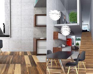 Industrialne połączenie kuchni i salonu
