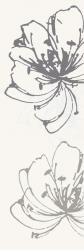 Midian Bianco Inserto Kwiat A  - Biały - 200x600 - декорации - Midian / Purio