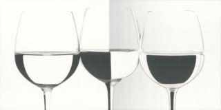 Vivida Bianco Inserto Vine   - Biały - 300x600 - Dekoracje - Vivida / Vivido