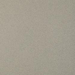 Solid Silver Gres Rekt. Mat.  - Szary - 598x598 - Płytki podłogowe - Solid